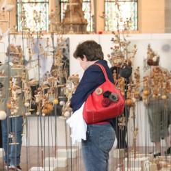 Cathédrale Amiens Vue d'ensemble